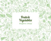Vue les fruits et légumes tropicaux frais de vert de modèle de fond de frontière illustration de vecteur