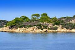 Vue lumineuse de bord de la mer de vert bleu Image libre de droits