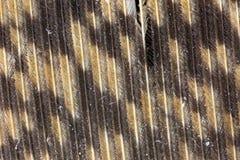 Vue magnifiée d'une grande plume de hibou à cornes photos stock