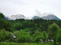 Vue magnifique des montagnes d'Alpes bavaria l'allemagne l'europe Arbres et fond verts de nuages de blanc image stock