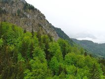 Vue magnifique des montagnes d'Alpes bavaria l'allemagne l'europe Arbres et fond verts de nuages de blanc image libre de droits
