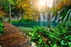Vue majestueuse sur l'eau de turquoise et faisceaux ensoleillés en parc national de lacs Plitvice Croatie Image libre de droits