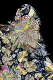 Vue microscopique des cristaux d'acide citrique dans la lumière polarisée Images libres de droits