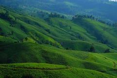 Vue montagneuse verte Photos libres de droits