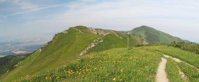 Vue occidentale à partir de dessus de Chleb en montagnes de Mala Fatra Image stock