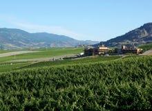 Vue Oliver Canada de vignoble de Colombie-Britannique images libres de droits