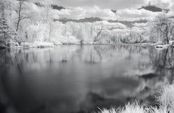 Vue paisible de fleuve dans l'infrare Photos libres de droits