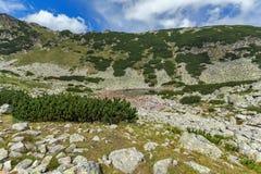 Vue panoramique étonnante des lacs Musalenski, montagne de Rila Image stock