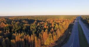 Vue panoramique aérienne d'une route avec le trafic le long de l'bois durs et forêt mélangés de conifère au coucher du soleil banque de vidéos