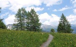 Vue panoramique d'Alpes Photographie stock
