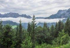 Vue panoramique d'Alpes autrichiens et une forêt image libre de droits