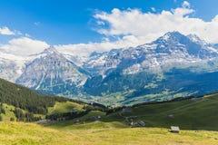 Vue panoramique d'Eiger, de Schreckhorn et de la vallée image libre de droits