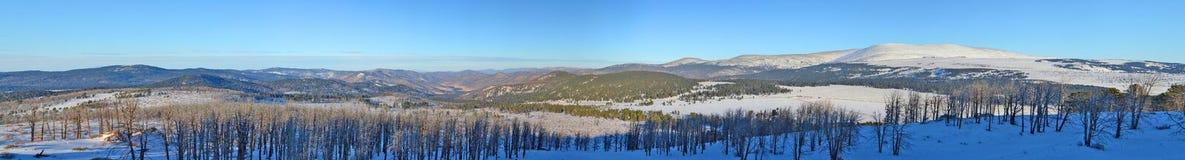 Vue panoramique d'hiver du terrain montagneux dans l'Altai, Sibérie, Russie images libres de droits