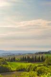 Vue panoramique d'un vignoble dans la campagne toscane Image libre de droits