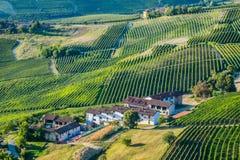 Vue panoramique d'un vignoble dans la région de Langhe pendant l'automne Photos stock