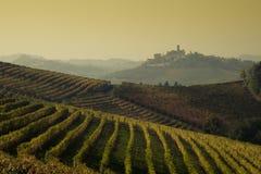Vue panoramique d'un vignoble dans la région de Langhe pendant l'automne Image libre de droits