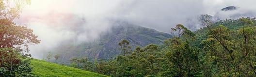 Vue panoramique dans Munnar dans Ghats occidental, Kerala image libre de droits