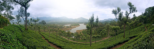 Vue panoramique dans Munnar dans Ghats occidental, Kerala photo stock