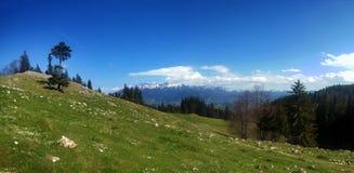 Vue panoramique de bâti Bucegi le ressort Photographie stock libre de droits