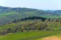 Vue panoramique de campagne et de vignobles dans la région de chianti, Toscane, Italie image libre de droits