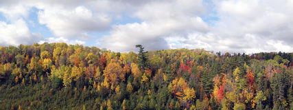 Vue panoramique de couleurs d'automne Photo stock