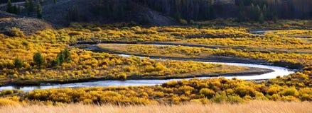 Vue panoramique de fleuve de serpent Photos stock