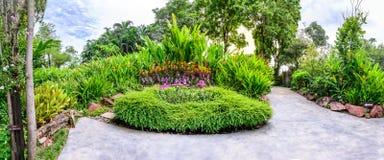Vue panoramique de jardin de flore avec la voie de ciment Image stock