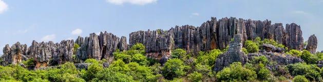 Vue panoramique de la forêt en pierre de sommets de chaux de Shilin - Yunn image libre de droits