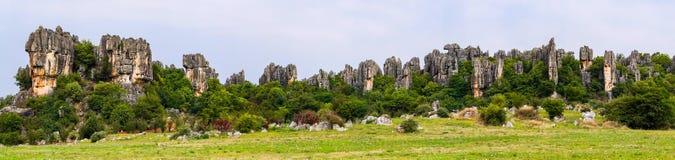 Vue panoramique de la forêt en pierre de sommets de chaux de Shilin - Yunnan, Chine photographie stock libre de droits