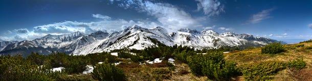 Vue panoramique de la montagne occidentale couverte de neige de Tatra Photos stock