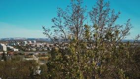 Vue panoramique de la ville de Reykjavik, la capitale de l'Islande Appareil-photo tournant autour du centre ville banque de vidéos