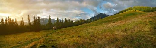 Vue panoramique de lever de soleil sur le pré en montagne de Tatra Image stock