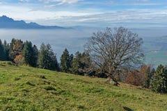 Vue panoramique de luzerne de lac, Suisse Image stock