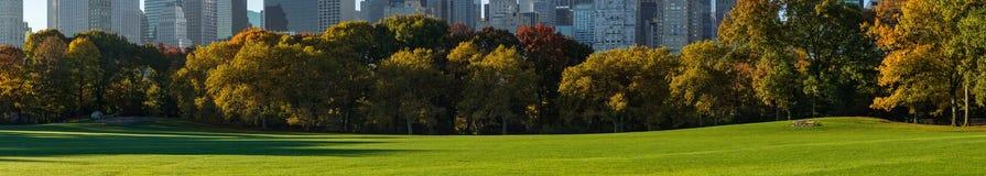 Vue panoramique de pré de moutons de Central Park Manhattan, New York City Image libre de droits