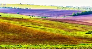 Vue panoramique de sc?ne rurale Champs de roulement d'agriculture photographie stock