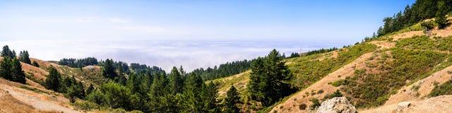 Vue panoramique des collines et des vallées du parc d'état de Mt Tamalpais, mer des nuages couvrant l'océan pacifique à l'arrière photo libre de droits
