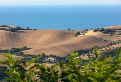 Vue panoramique des oliveraies et des fermes sur Rolling Hills de l'Abruzzo et à l'arrière-plan la Mer Adriatique image libre de droits