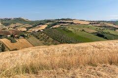 Vue panoramique des oliveraies et des fermes sur Rolling Hills de l'Abruzzo image stock