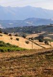 Vue panoramique des oliveraies et des fermes sur Rolling Hills de l'Abruzzo photos stock