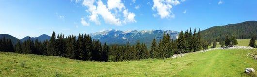 Vue panoramique du bâti Piatra Craiului l'été Photographie stock