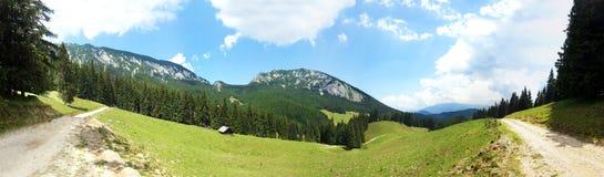 Vue panoramique du bâti Piatra Craiului l'été Photographie stock libre de droits