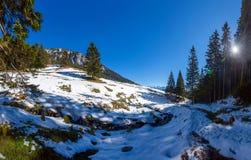 Vue panoramique du bâti Piatra Craiului l'hiver Photographie stock libre de droits