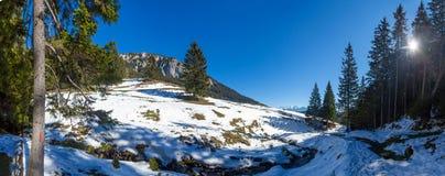 Vue panoramique du bâti Piatra Craiului l'hiver Photo libre de droits