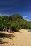 Vue panoramique en Hawaï Photo stock