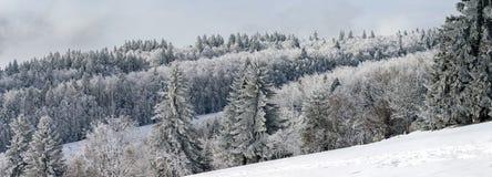 vue panoramique large de flanc couvert de neige de colline Photographie stock libre de droits
