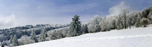 vue panoramique large de flanc couvert de neige de colline Photo libre de droits