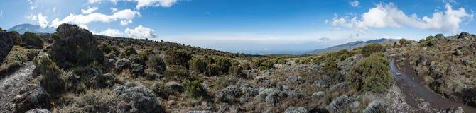 Vue panoramique rentrée la zone de bruyère de l'itinéraire de Machame sur le mont Kilimandjaro images stock