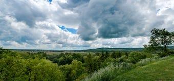 Vue panoramique sur la forêt du haut de la colline photo libre de droits