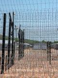 Vue par la barrière de prison, Photographie stock