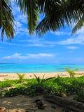 Vue par les palmiers à travers une lagune tropicale de turquoise Image stock